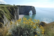 Paris | France | Normandy tour Normandy beaches tour D - day beaches tour Caen Memorial Museum World War II tour