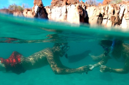 Los Cabos Tours Land S End Snorkel And Kayak Mexico
