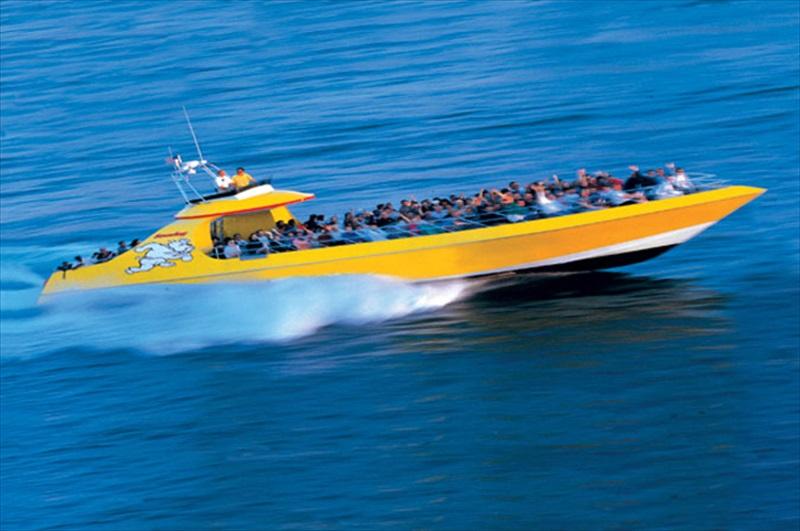 Seadog Speedboat Adventure - Baltimore   TourSales