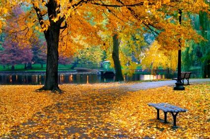 Boston Tours The Best Of Fall Foliage Tour Usa