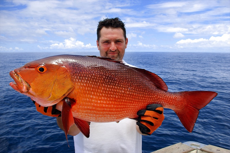 Drift fish the atlantic trip fort lauderdale toursales for Drift fishing fort lauderdale