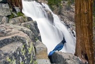 Photo of Lake Tahoe | Lake Tahoe Waterfall Helicopter Tour