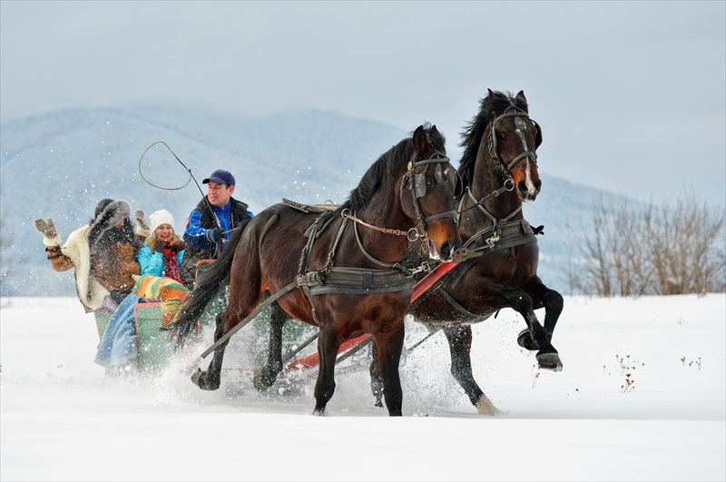 Lake Tahoe Sleigh Ride - Lake Tahoe | TourSales