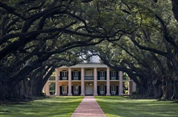 New Orleans | USA | New Orleans Plantation Tour New Orleans Laura Plantation Tour New Orleans Oak Alley Tour New Orleans Oak Alley Plantation Tour