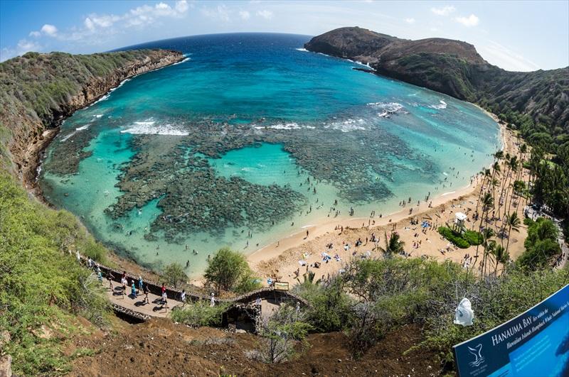 1 Tank Scuba Dive For Beginners Honolulu Toursales