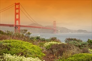 Photo of San Francisco | Pacific Coastline Beach and Golden Gate Bridge Tour