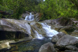 Cairns | Australia | Australian Waterfalls Tour Australian Adventure Tour  tour Lake Barrine National Park rainforest walking tour jungle trek tour