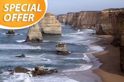 Melbourne | Australia | Great Ocean Road Tour from Melbourne Great Ocean Road tour Great Ocean Road eco tour tour Otway Ranges tour Port Campbell National Park Great Ocean small group eco tour