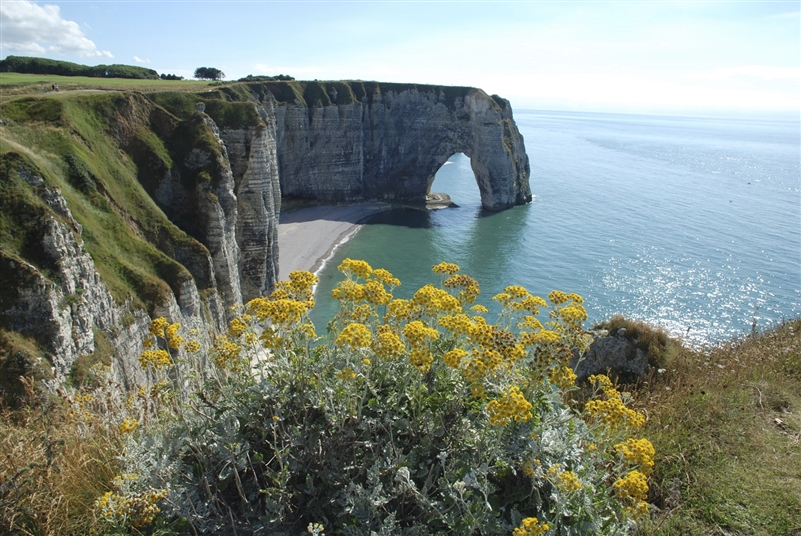 Beaches Of Normandy Tour From Paris