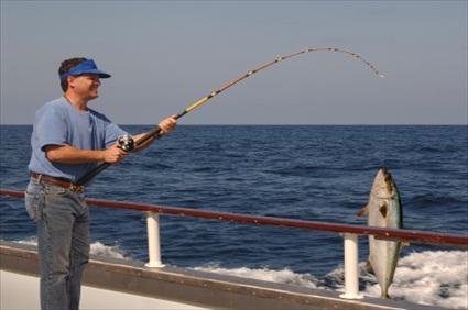 Anaheim tours half day deep sea sport fishing usa for Deep sea fishing california