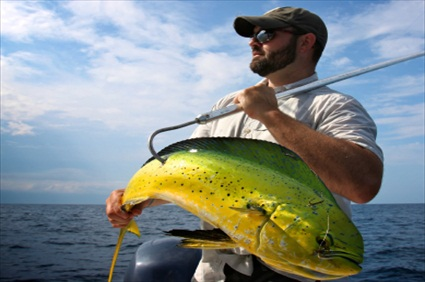 Anaheim tours half day deep sea sport fishing usa for Deep sea fishing dana point