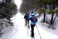Photo of Denver | Full Day Front Range Snowshoeing Adventure in the Rocky Mountains