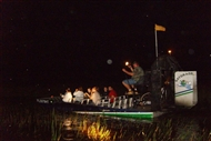 Photo of Fort Lauderdale | Florida Everglades Evening Airboat Adventure