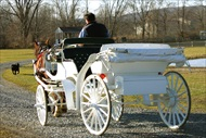 Photo of Lake Tahoe | Lake Tahoe Carriage Ride