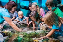 Orlando | USA | Orlando, Florida Orlando Vacation Orlando attractions Central Florida  Orlando Explorer Pass