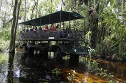 Photo of Orlando | Orlando EcoSafari Adventure Tour