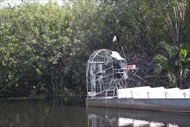 Photo of Orlando | Orlando Airboat Adventure