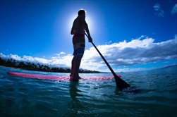 Photo of Orlando | Banana River Lagoon Eco Stand-Up Paddleboard Tour