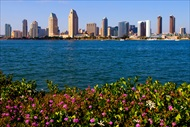 Photo of San Diego | Hour Long San Diego Harbour Cruise and Sea Lion Adventure